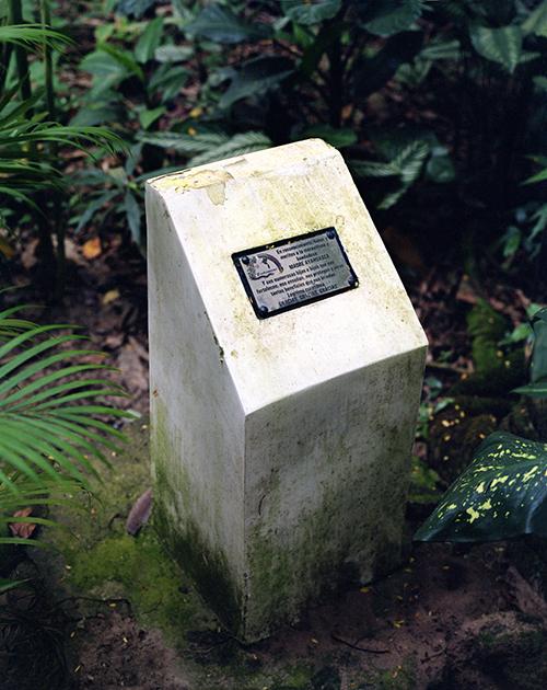 Chamanisme Amazonien - Takiwasi